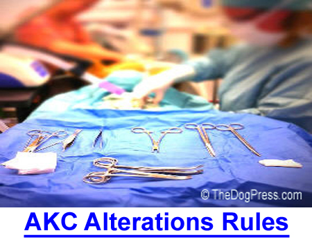 ALTERATIONS - AKC RULES AGAINST? Should the AKC rule be enforced against cosmetically changing a dog's natural appearance? What about surgically?