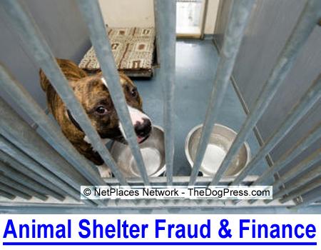 ANIMAL SHELTER FRAUD & FINANCE: See shocking SPCA and Humane Society financial charts...
