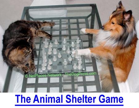 THE ANIMAL SHELTER GAME: Animal Shelters, Rescues and Animal Control have a plan...