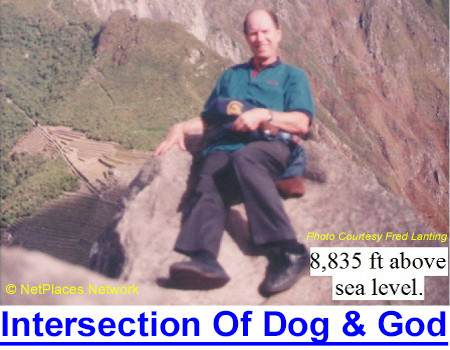 AT THE INTERSECTION OF DOG AND GOD: From warm sleeping companion to hunting partner to fierce protector, this world-renowned judge succinctly sums up our connection to the dog…