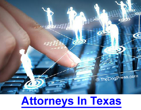 ATTORNEYS IN TEXAS: An act regulating the tracking, hunting and harvesting of attorneys.