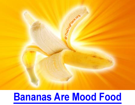 BANANAS ARE MOOD FOOD: Helps alleviate anemia, depression, upset stomach, and stress in people and dogs and tastes great!