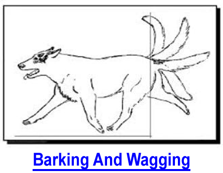 BARKING AND WAGGING: How to stop your dog from barking? First you need to understand his language as well as he knows yours, then you can teach him anything because no animal wants to learn more than your dog!
