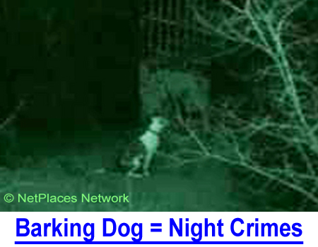 BARKING DOG = NIGHT CRIMES The neighbor's dog barking all night can't be funny, unless it's this true story of how to stop a barking dog.  Don't try this at home...