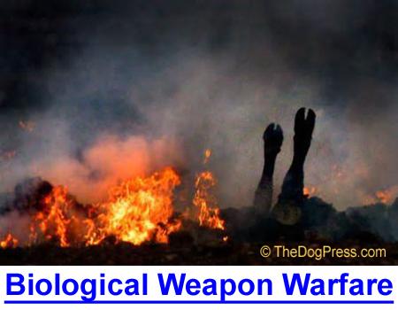 BIOLOGICAL WEAPONS WARFARE: Super-secret bioweapons research in a hidden North Carolina facility.