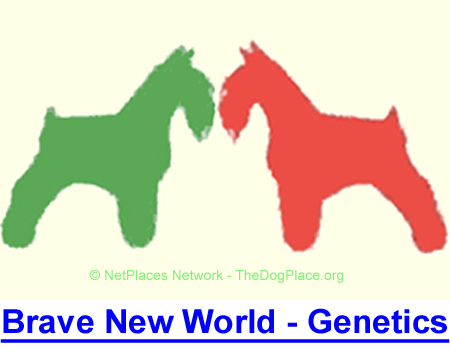 A BRAVE NEW WORLD OF CANINE GENETICS: Easy to grasp genetic information by a top breeder and researcher.