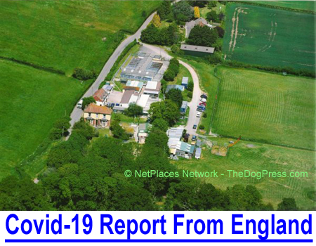 COVID-19 REPORT FROM ENGLAND: Int'l judge-owner of premier import-export-boarding kennels reports dog shows cancelled and U.K. losses equal to American businesses and dog owners.
