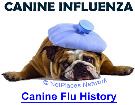 """CANINE FLU HISTORY: """"The Crud"""" got loose when UNF researched the vaccine."""