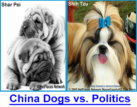 CHINA DOGS VS. CHINA POLITICS: China is buying up America's farmland and the food companies they don't already own. How does that affect YOU as an animal owner and consumer?