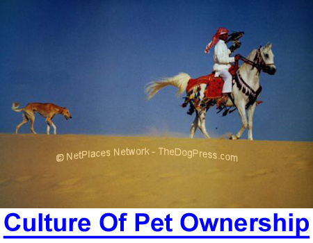 CULTURE OF PET OWNERSHIP THREATENED: All cultures worshipped or utilized dogs, even Muslim countries.