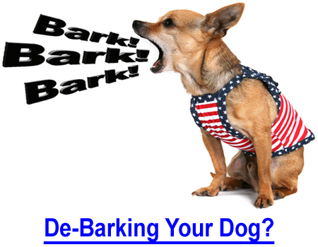 STOP BARKING BY DE-BARKING! How to stop your dog from barking!  He won't shut up when scolded, neighbors complaining. Bark collars don't work? There is a surgical de-barking solution!