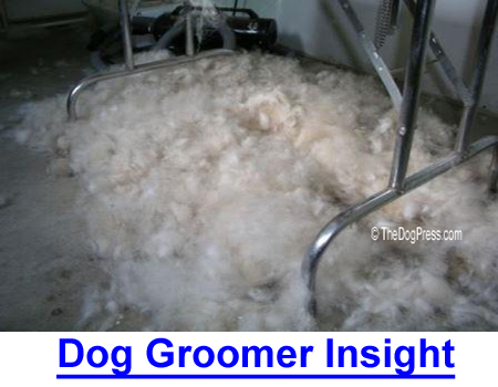 DOG GROOMER INSIGHT: A humorous but factual day in the life of a professional groomer, it's the second most dangerous doggy profession!