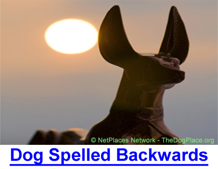 DOG SPELLED BACKWARDS: Man's health and religious history from Anubis to King James to today.