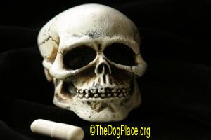 Prescribing Death, The sick truth about prescription drugs and vaccines.