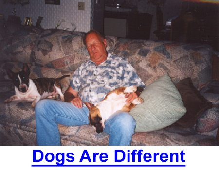 DOGS ARE DIFFERENT: A reader's conversation - It's HOW they are different that makes the dog man's best friend, co-worker and symbol of unwavering loyalty. Here's my take but tell us what makes YOUR dog different.