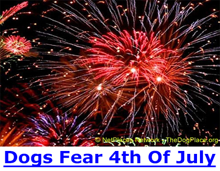 DOGS FEAR OF FOURTH OF JULY: Dogs have exceptional hearing and Independence Day fireworks and loud crowds can frighten, even traumatize your dog, causing lifelong fear phobias so leave him home on the 4th of July!