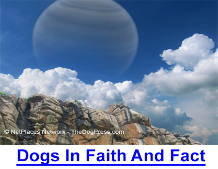 DOGS IN FAITH AND FACT: The dog was the first domesticated species but scientist-theologian proves the canine did not evolve from wolves or any other creature and is in fact, untraceable!