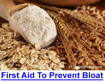 FIRST AID FOR BLOAT - Bloat can lead to agonizing death if not stopped quickly but years ago I found an over-the-counter product that deflates the gas which can lead to deadly torsion.