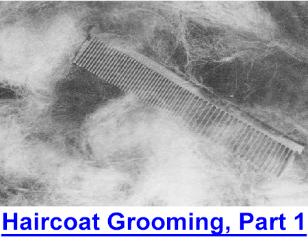HAIRCOAT GROOMING: this professional shares which combs and brushes protect or remove coat, insider tips on shedding cycles, hair control, and the use of tools.