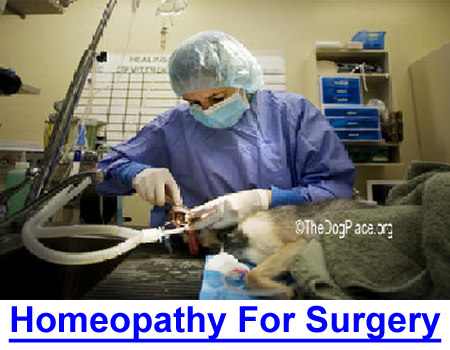 HOMEOPATHY FOR SURGERY: Before and after surgery to fight infection, ease nausea, bruising and promote healing...