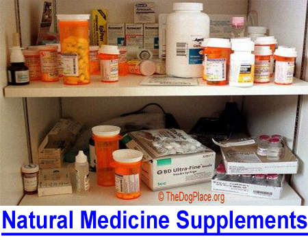NATURAL MEDICINE, THE SKINNY ON SUPPLEMENTS: The supplements you may take or give to your dogs.