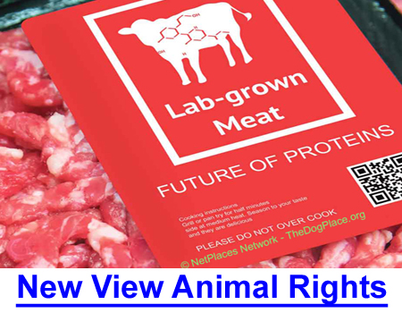 NEW VIEW ANIMAL RIGHTS 2021: Putting animal rights over human rights, genetic meat over real steak, and weird Oscar Awards justified in 2021 mentality?