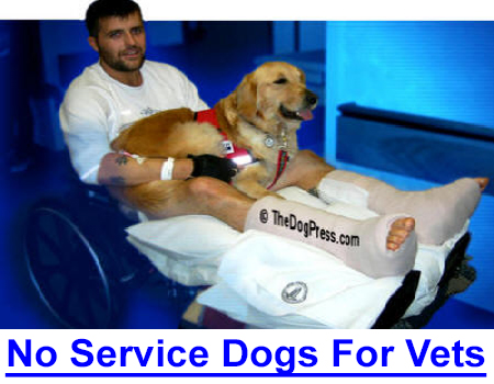 NO SERVICE DOGS FOR VETERANS? It is 2019 and the veterans who fought for our freedom still battle the Government which does not provide service dogs for PTSD disabled veterans.