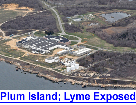 PLUM ISLAND AND LYME DISEASE EXPOSED: The secret biological facility for warfare and deadly diseases.
