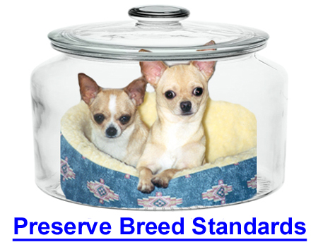 PRESERVING BREED STANDARDS: Group judge says we ignore key points in the breed standards.