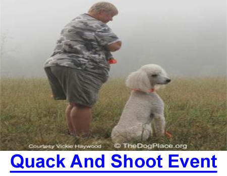 QUACK AND SHOOT EVENTS: Come along to a NC Poodle club retriever trial, sit behind the duck blind and see what and who makes training for a Working Certificate possible!