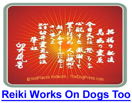 REIKI WORKS ON DOGS TOO: Did you know that Reiki can do wonders for your dog? Learn more about this healing therapy.