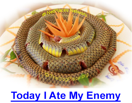 TODAY I ATE ME ENEMY: The sweetness of victory is celebrated in tribute to this rattlesnake's last day - No Greater Scorn than Knife and Fork, No Greater Triumph than the Plate.