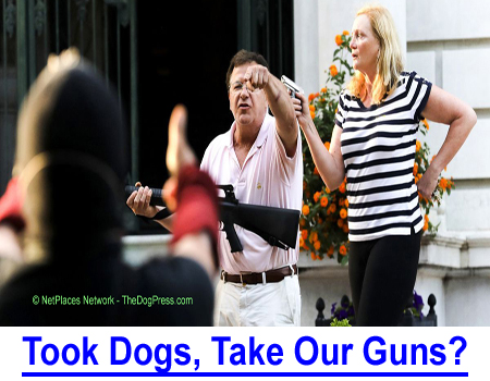 TOOK OUR DOGS, TAKE OUR GUNS! Does a Constitutional Right to keep and bear arms include watchdogs for protection?