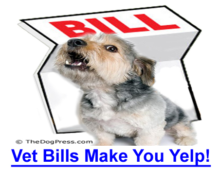 VET BILLS MAKE YOU YELP! Feel you're being held hostage by high cost pet medication and vet bills? This information is for you.