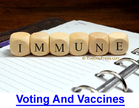 VOTING AND VACCINES: Before voting or giving a booster shot, read these frightening facts!