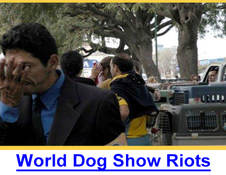 2005 WORLD DOG SHOW RIOTS - FIRST 1st Hand Account, TheDogPress offers the first photos and on-site report of the Riots in Buenos Aires.