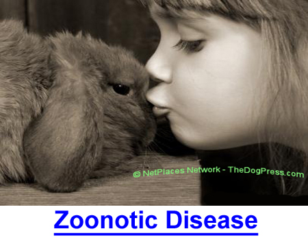 ZOONOTIC DISEASE: Kissing a bunny or puppy does not transmit zoonotic disease.  Bacteria are everywhere but are more likely to cause pneumonia than zoonotic disease.