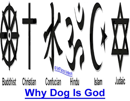 """WHY DOG IS GOD SPELLED BACKWARDS: Devoted dog owners agree """"dog is God spelled backwards"""" and think of it as just a saying but this famous religious scholar explains why it became an adage!"""