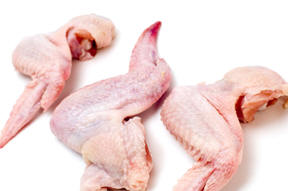 CHICKEN WINGS ARE GOURMET TREATS FOR YOUR DOG