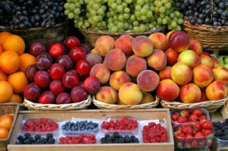 DOGS LOVE FRUIT, TRY APPLES, BANNANAS & GRAPES