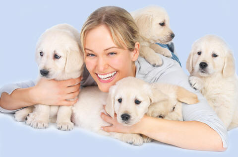 The best breeders study canine genetics and use it to produce better dogs!