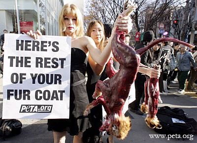 PETA protesters with bloody fox carcass, courtesy PETA