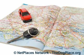 Plan a disaster survival escape route now!