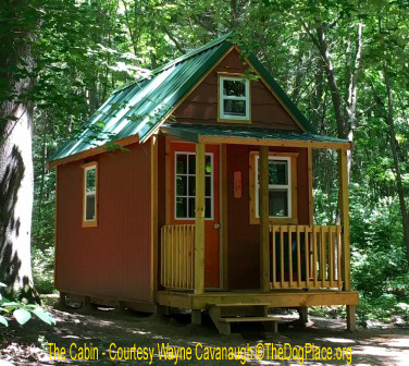 Wayne Cavanaugh built this writing cabin in the woods.