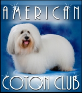 The AMERICAN COTON CLUB was formed in 2000 as an advocate for the Coton de Tulear