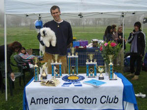 The American Coton Club defends the heritage of the Coton de Tulear, the Royal Dog Of Madagascar