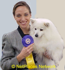 """BREEDING & SHOWING DOGS IS A REWARDING CAREER! Read more on the """"How To Show Your Dog Index"""""""